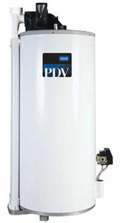 Power Direct Vent Water Heater